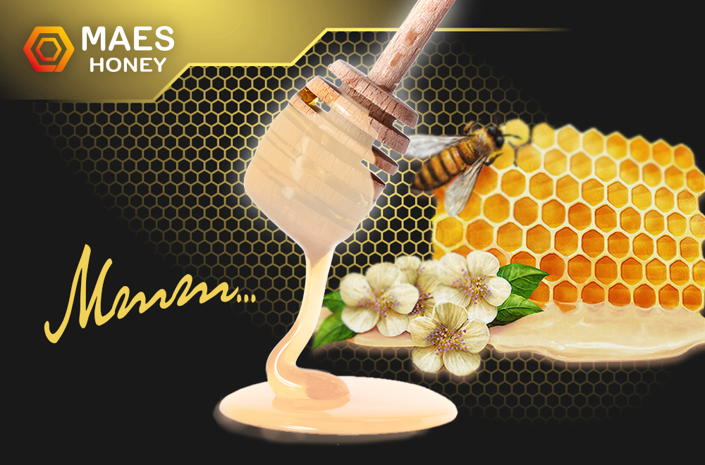 miel crema gourmet de maes honey.